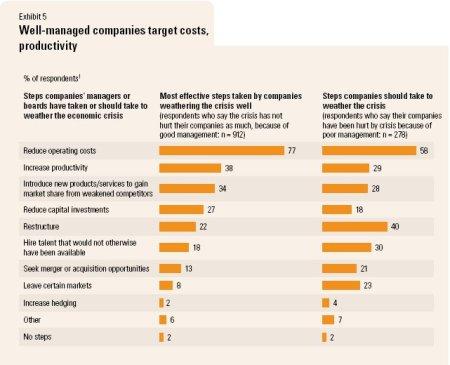 McK Economic Survey (Mar 2009) - Steps by Companies